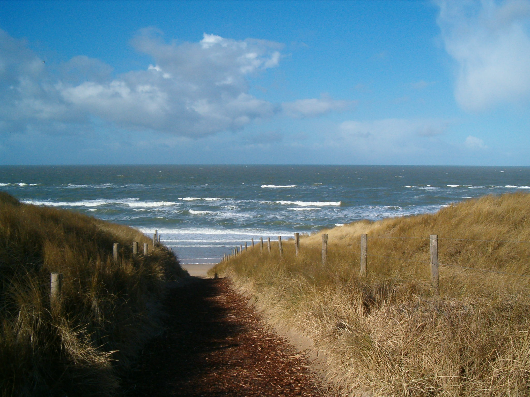 Strand castricum in de buurt van Huize Koningsbosch
